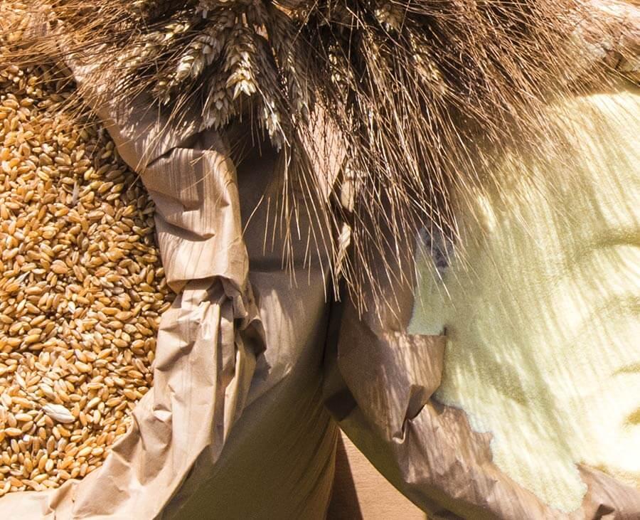 semola di grano duro ingredienti